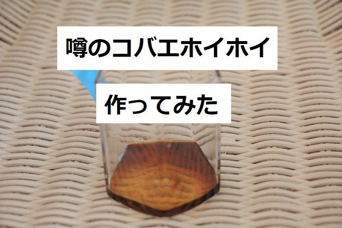 めんつゆ 洗剤 コバエ